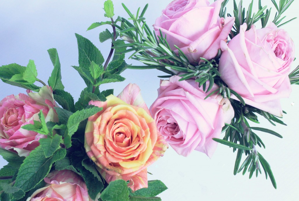 rose fiesta, flowers and herbs, vase with a secret, nutella,  roses, O'Hara rose pink