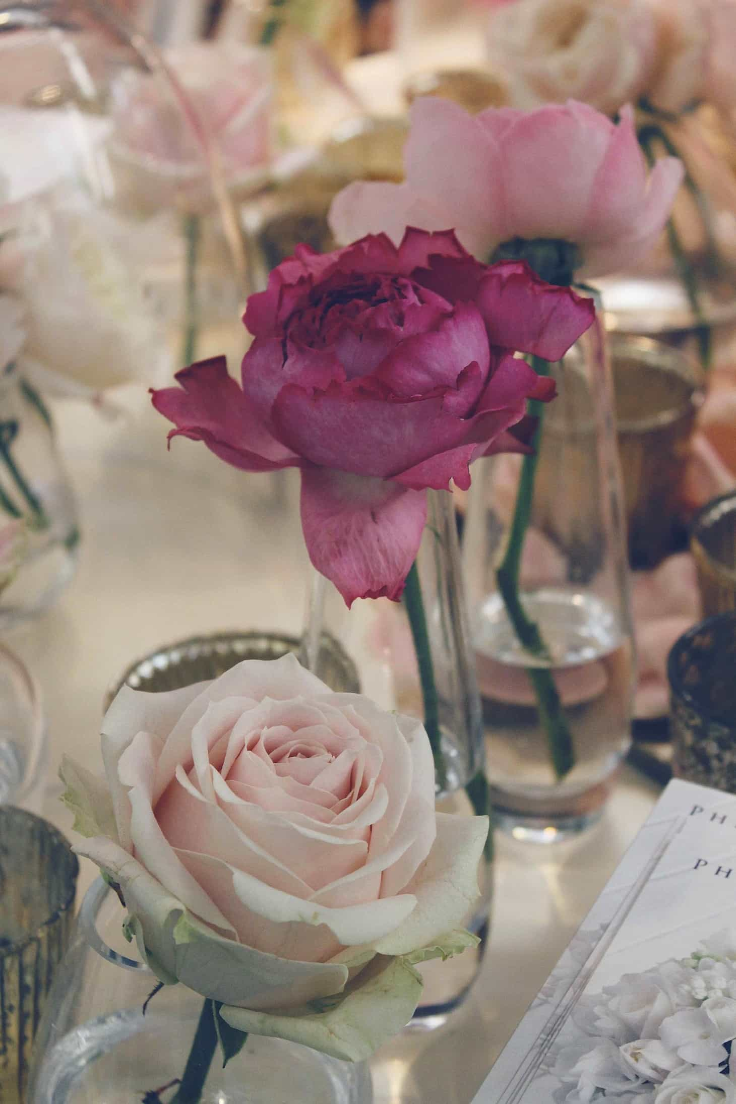 Philippa Craddock at Brides the show, blush roses, floral arch, garden roses