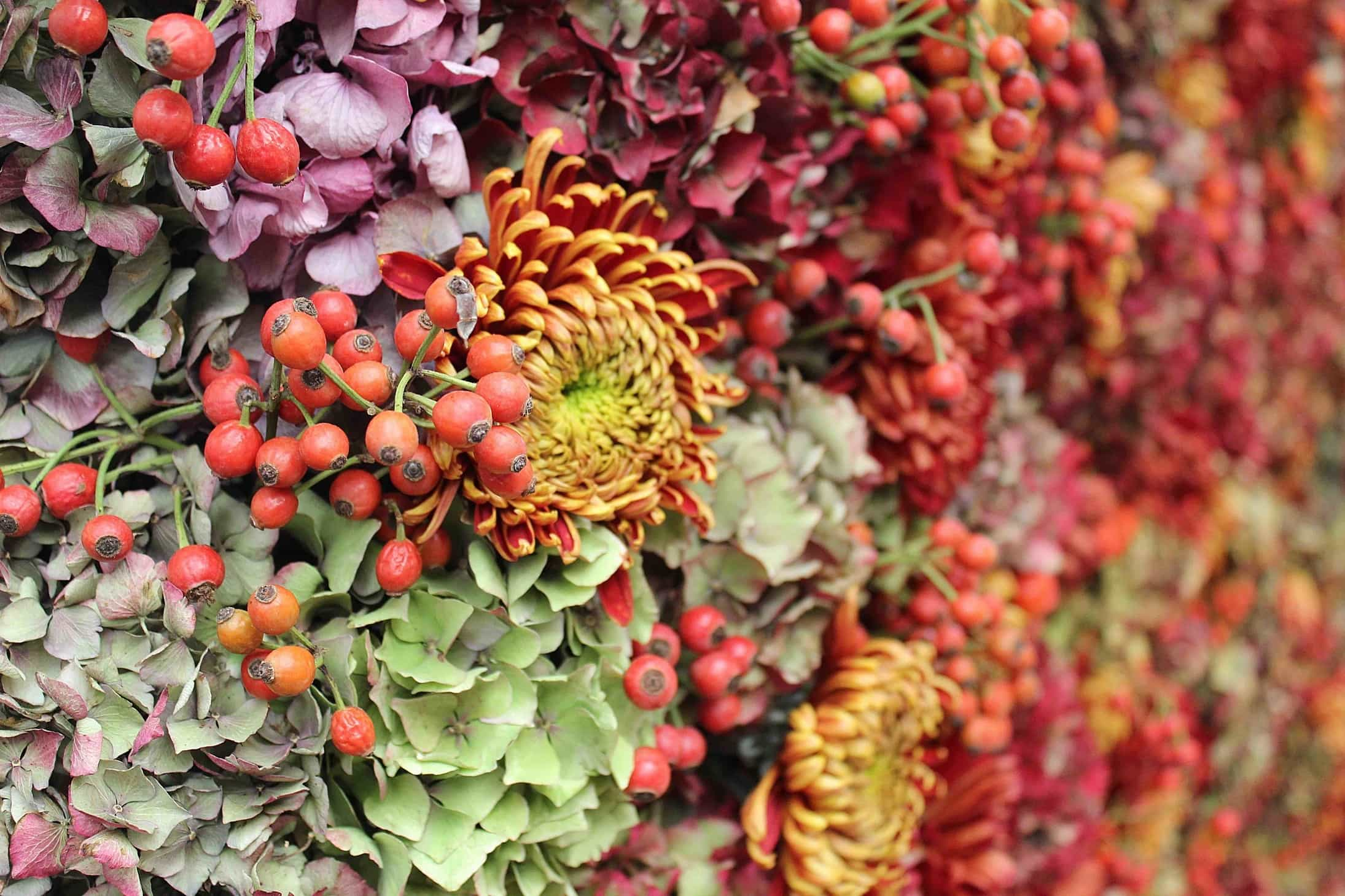 Autumn dream at Stylist live,  stylish flowers, flower wall, fall colors, autumn inspiration, stylist 2015
