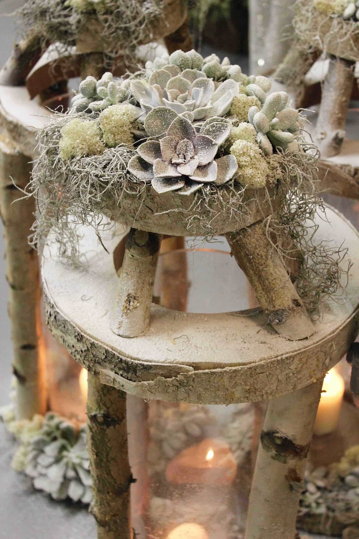 Christmas showcase, Wild at Heart, how to decorate for christmas, winter decor, roses, christmas 2015 trends