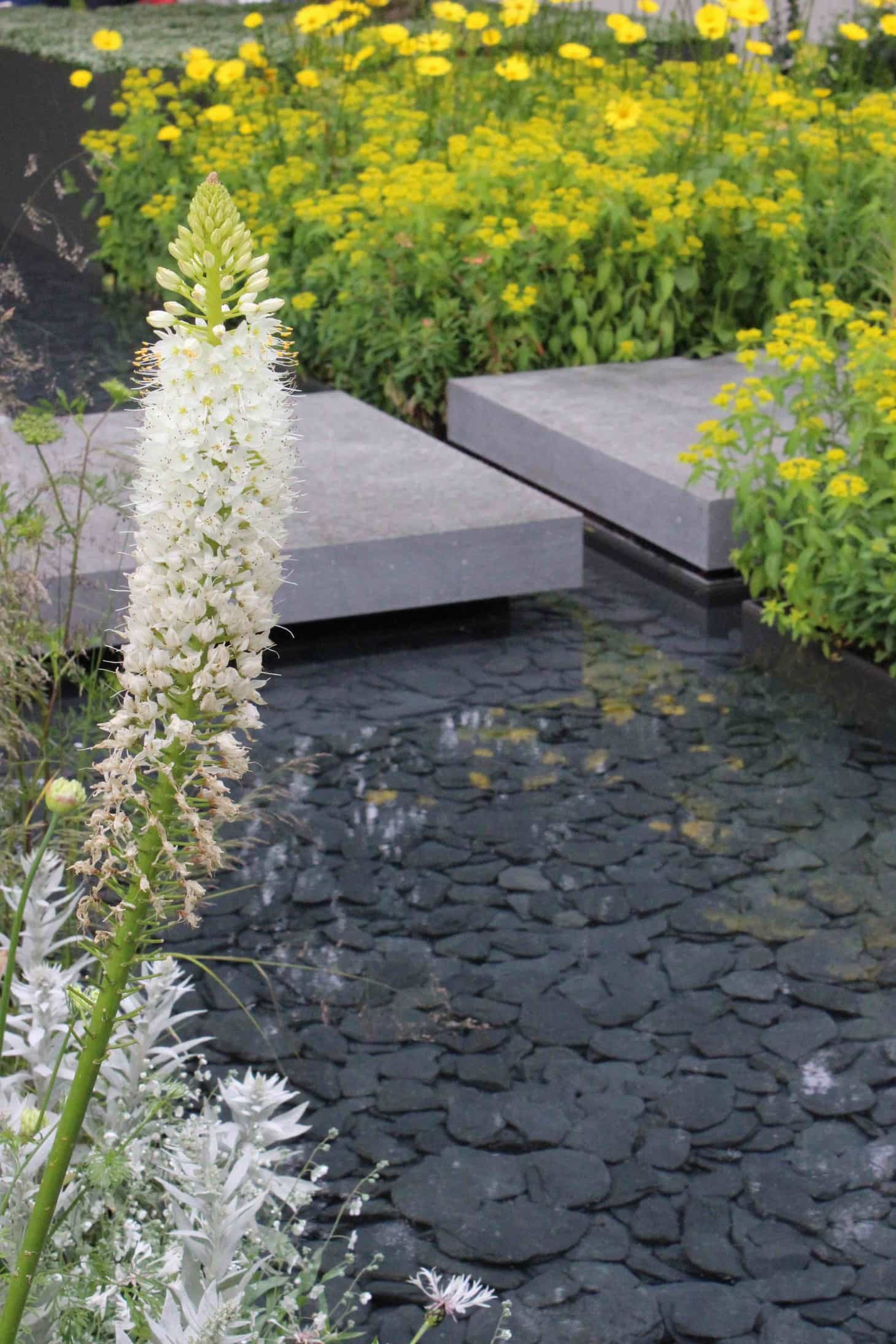 chelsea flower show 2015, last years flower show