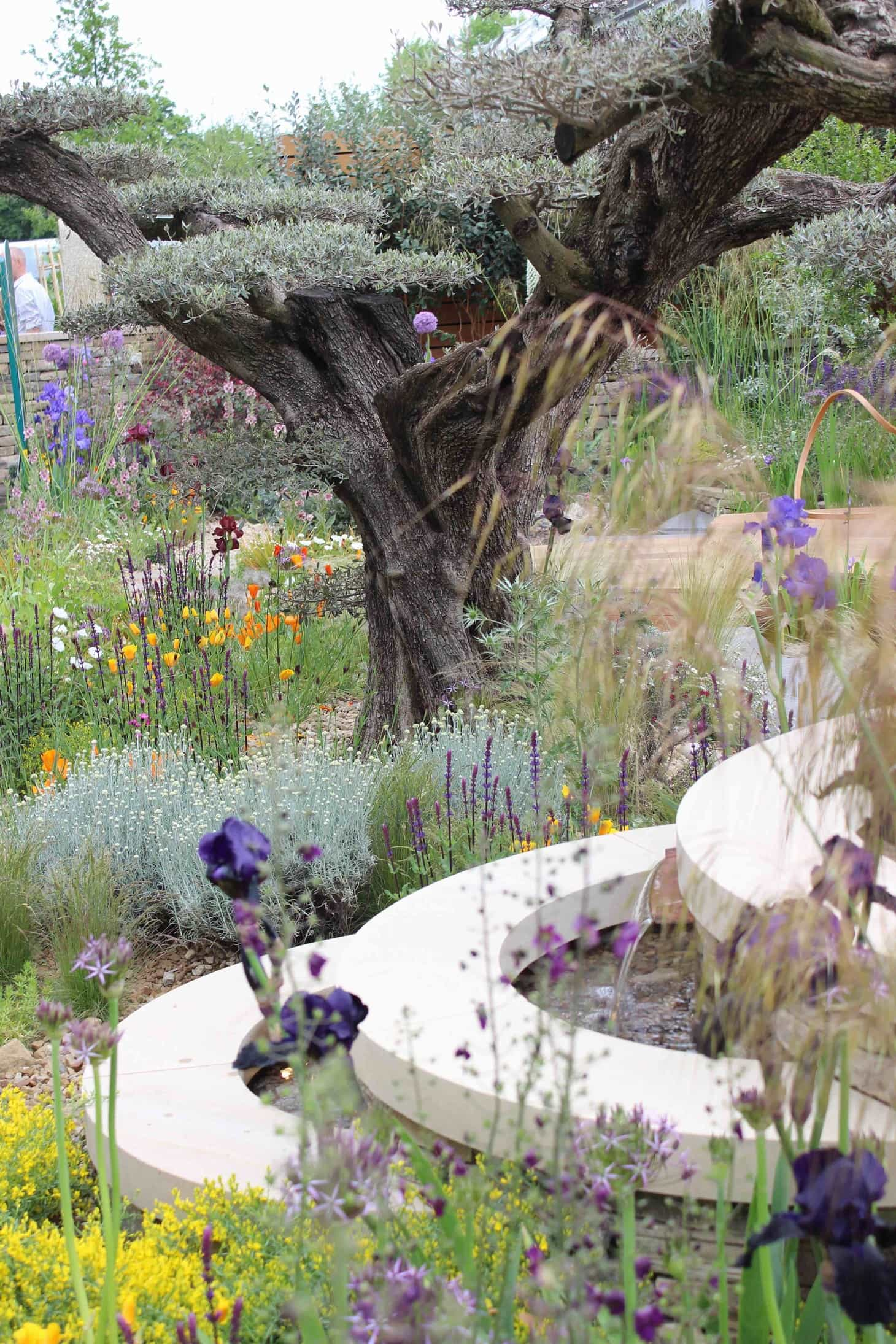 The homebase garden - urban retreat, Chelsea flower show 2015, adam frost, gold winner
