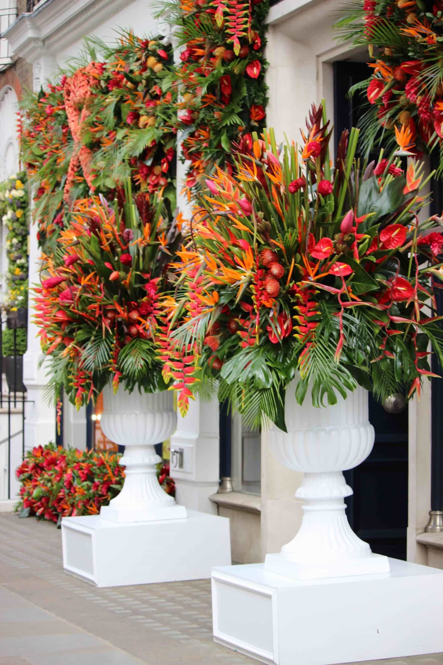 Flower Carnaval takes over London,  Chelsea in bloom, 2016, RHS chelsea 2016, Carnaval, Rio, London, Hackett