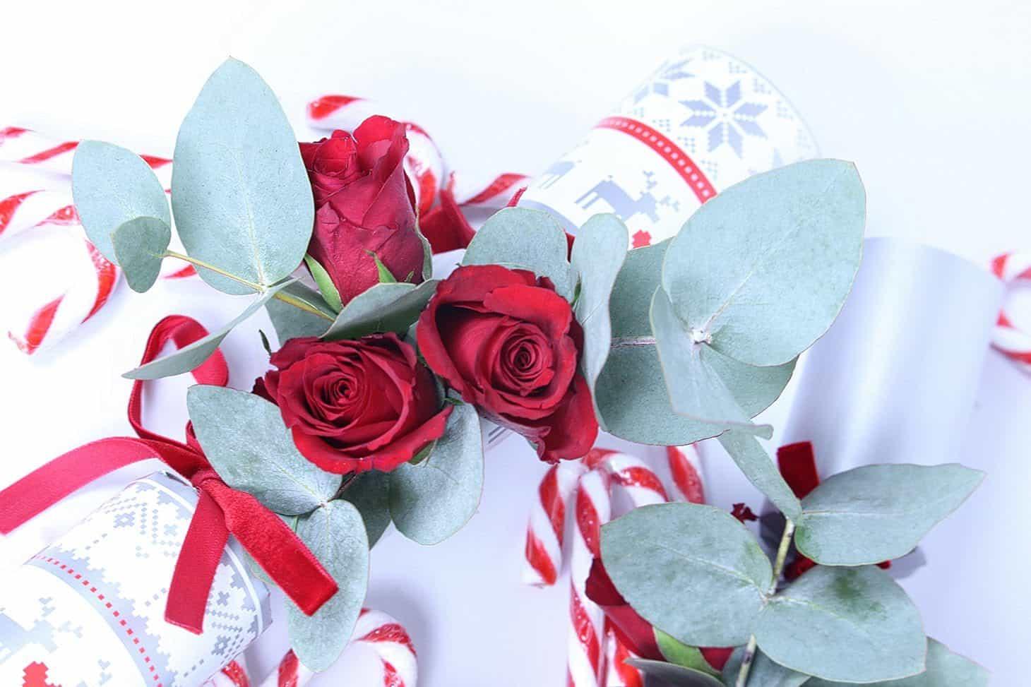 Christmas Flower DIY, DIY Christmas Flowers, botanical Xmas cracker, christmas cracker, winter DIY, red roses, flower winter wonderland, decorate for christmas party, christmas table decor