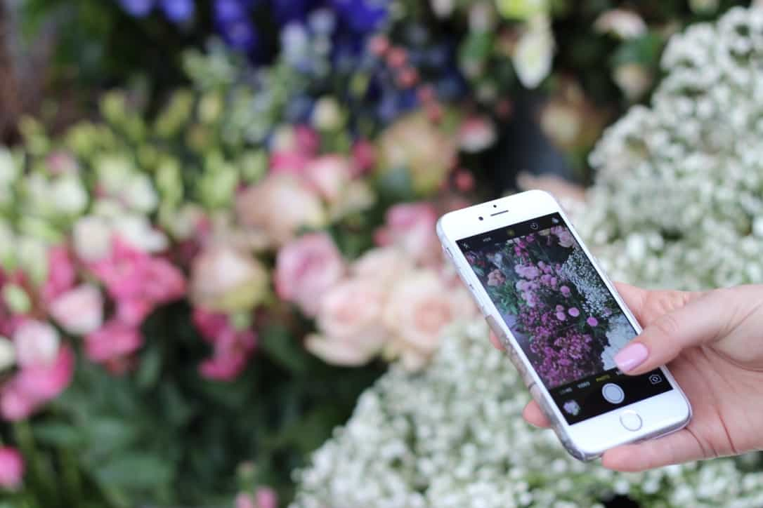 mobile flower photography
